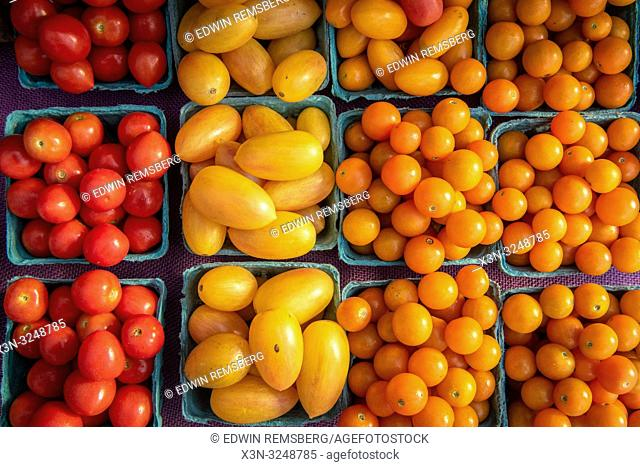 High angle view of cartons full of red, yellow and orange cherry tomatoes (Solanum lycopersicum var. cerasiforme) for sale at farmers' market, Rehoboth Beach