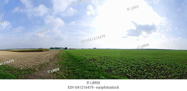 panoramic view of partly harvested fields until the horizon, Austria