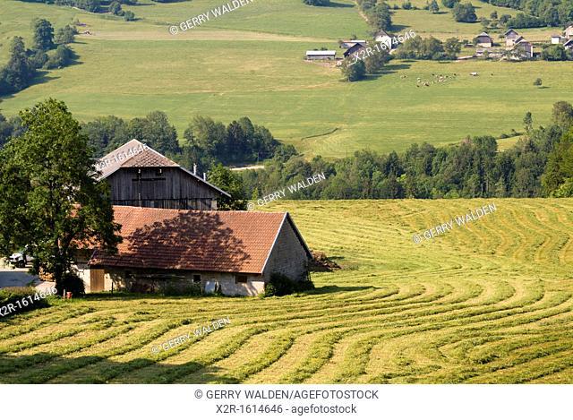 France - Savoie - Bauges National Park - landscape with farm buildings