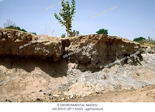 BURKINA FASO - EROSION. Gully erosion caused by deforestation. Without tree cover, rainstorms wash away the topsoil.