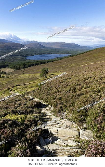Scotland, Highland, Cairngorms National Park, Aviemore, view of the Cairngorms and the Loch Morlich in background