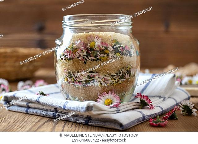 A jar filled with fresh common daisy flowers and cane sugar, to prepare homemade herbal syrup against cough