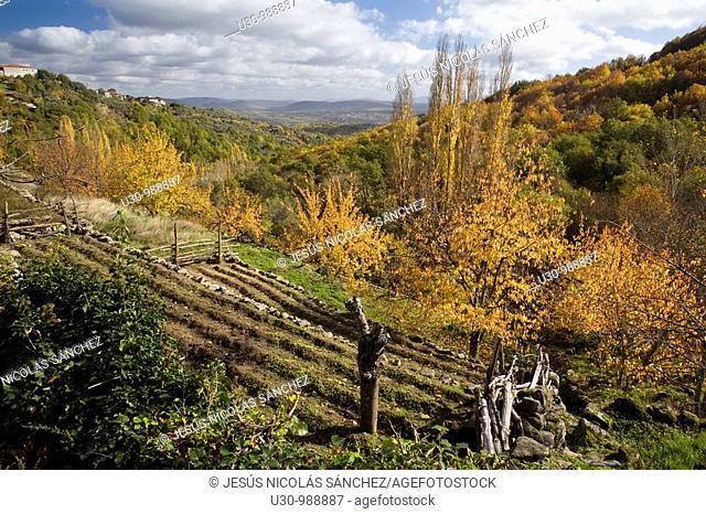 Trail of Camino del Agua, in Las Batuecas-Sierra de Francia Natural Park  Mogarraz  Monforte de la Sierra  Salamanca  Castilla y León  Spain