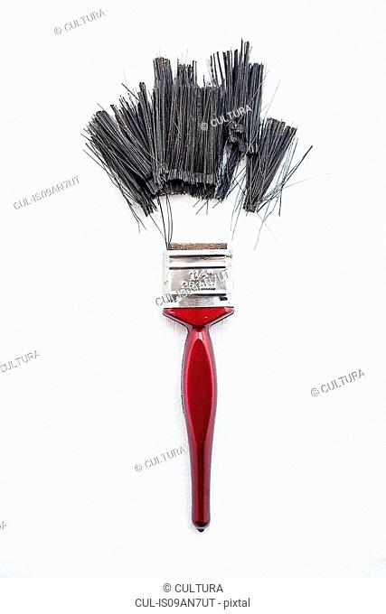 Bristles detached from paint brush