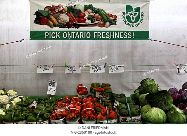 CANADA, NEWMARKET, 13.10.2009, Fresh Ontario vegetables for sale at a farm. - NEWMARKET, ONTARIO, CANADA, 13/10/2009