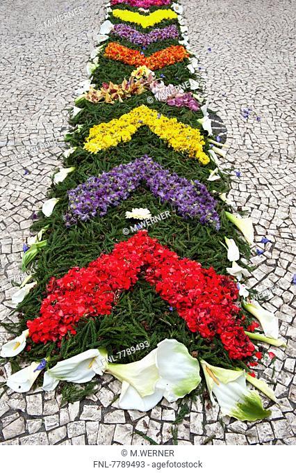 Headline: Flower decoration for flower festival Festa da Flor, Funchal, Island Madeira, Portugal