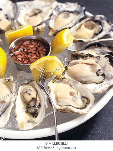 Raw Oysters on Ice with Lemon