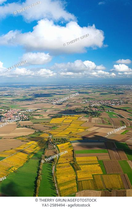 France, Bas Rhin 67, Wines road, Handschuheim, vineyards in autumn aerial view