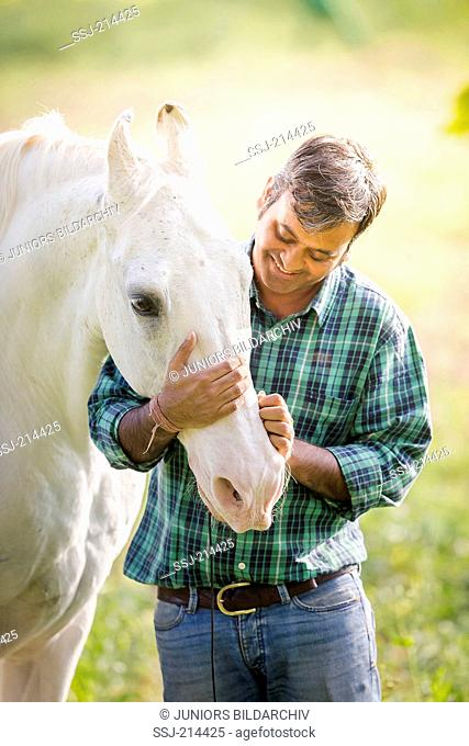 Marwari Horse. Man fondling a senior gray stallion. Rajasthan, India