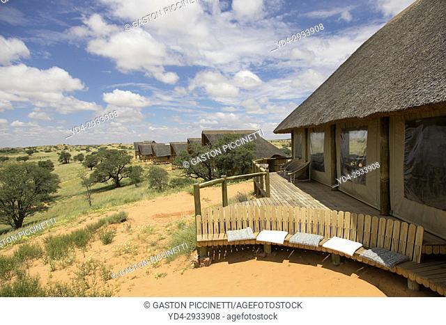 Rooiputs Lodge, Botswana, Kgalagadi Transfrontier Park, Kalahari desert, Botswana
