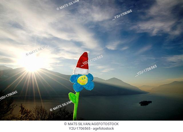 Smile flower with christmas hat and sunbeam