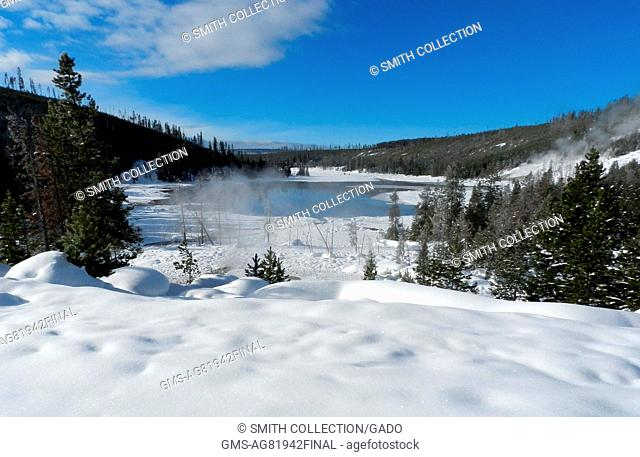 The snow-covered landscape surrounding Nymph Lake, Yellowstone National Park, Wyoming, February, 2013. Image courtesy Diane Renkin/Yellowstone National Park
