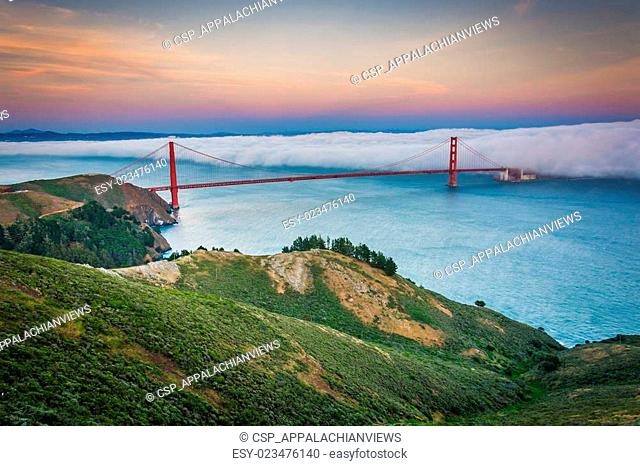 Sunset view of the Golden Gate Bridge in fog from Hawk Hill, Golden Gate National Recreation Area, in San Francisco, California