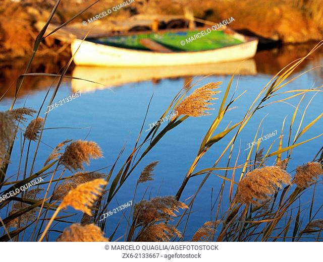 Wattle and fishing boat at Lo Golero draining channel of Fangar Bay. Ebro River Delta Natural Park, Tarragona province, Catalonia, Spain