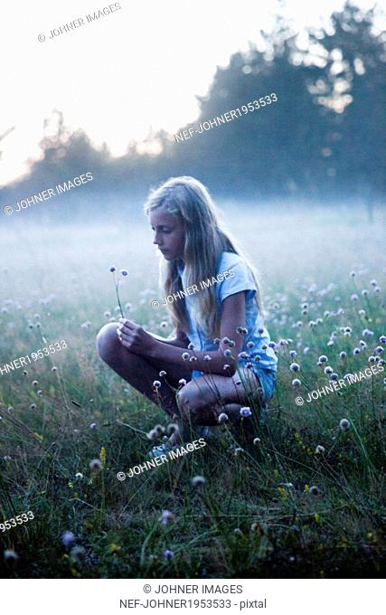 Girl picking flowers on foggy meadow, oland, Sweden