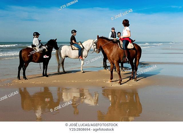 Equestrian tourism on the beach, Doñana Natural Park, Matalascañas, Huelva province, Region of Andalusia, Spain, Europe