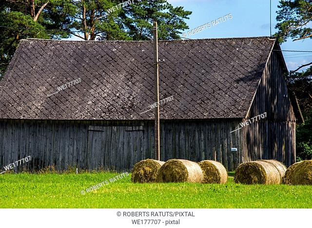 Hay bale lying on the green meadow at the barn. Hay bales on the field near the barn. Freshly rolled hay bales at the barn in Latvia
