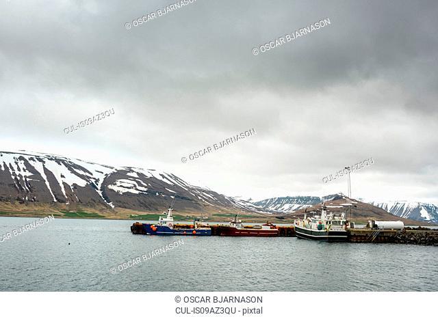 Boats moored at dock, Westfjords, Iceland