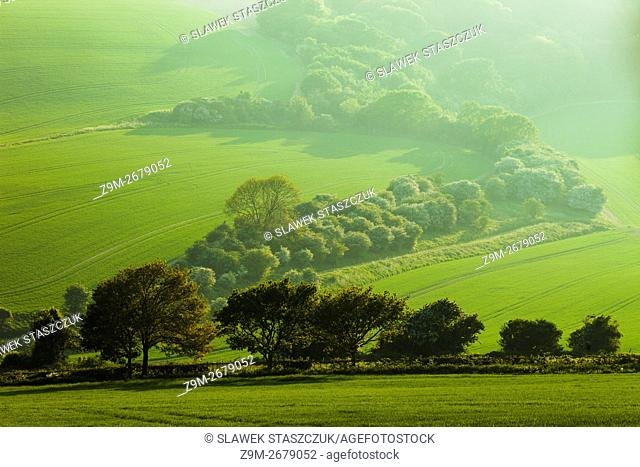 Spring evening in South Downs National Park near Lewes, East Sussex, England