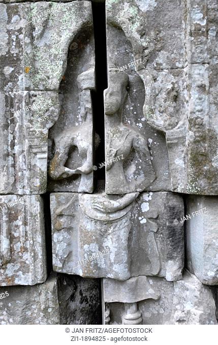 detail of ruins of Angkor Ta Prohm