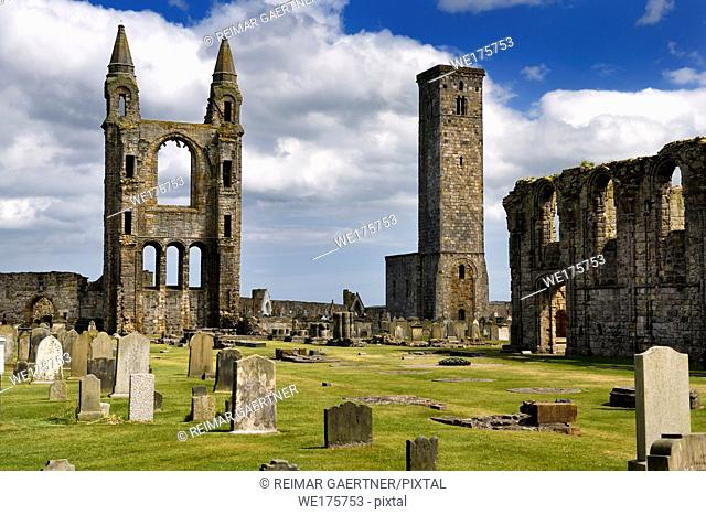 14th Century stone ruins of east tower and south wall of St Andrews Cathedral with 12th Century St Rules Tower St Andrews Fife Scotland UK
