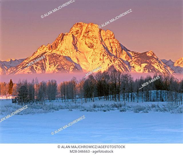 Winter sunrise over Mount Moran. Grand Teton National Park. Wyoming. USA