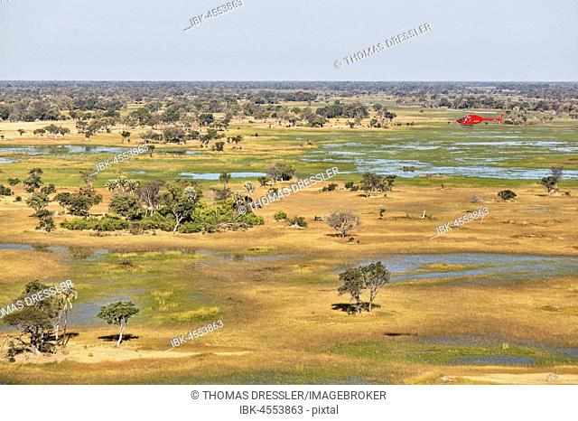 Freshwater marshes with streams, channels and islands, the helicopter is on a scenic flight, aerial view, Okavango Delta, Moremi Game Reserve, Botswana