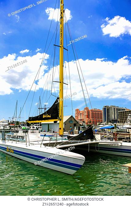 A catamaran sailboat in the marina at Clearwater in Florida