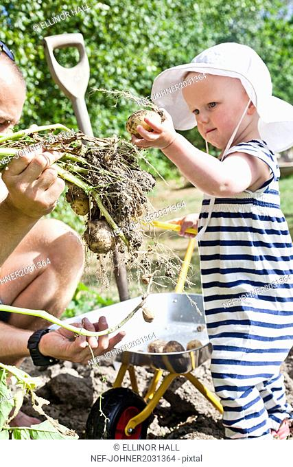 Baby girl with father in garden