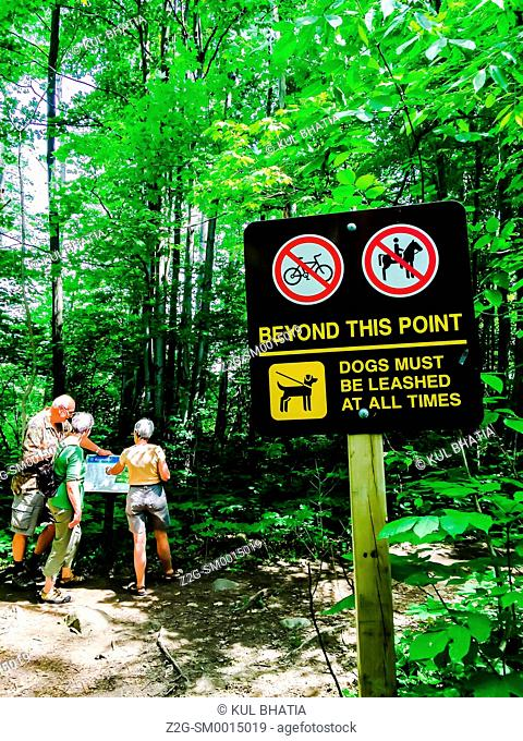 Three hikers consult a map on a hiking trail, Ontario, Canada