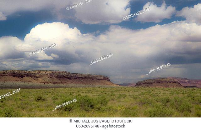 On the road to Arizona's Grand Canyon at Toroweap at Grand Canyon National Park