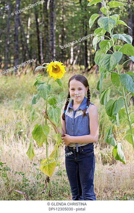 Tween girl standing by a sunflower in summer in a field in Palmer Alaska