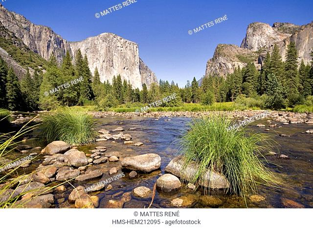 United States, California, Yosemite National Park listed as World Heritage by UNESCO, El Capitan and Merced River