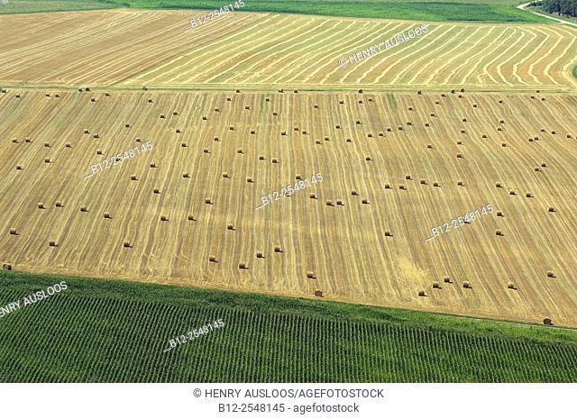 Harvestime, Roundballs, France
