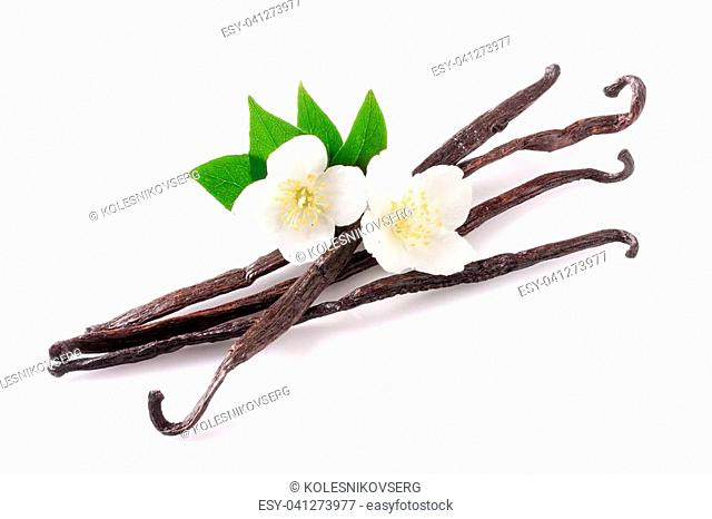 Vanilla sticks with flower and leaf isolated on white background