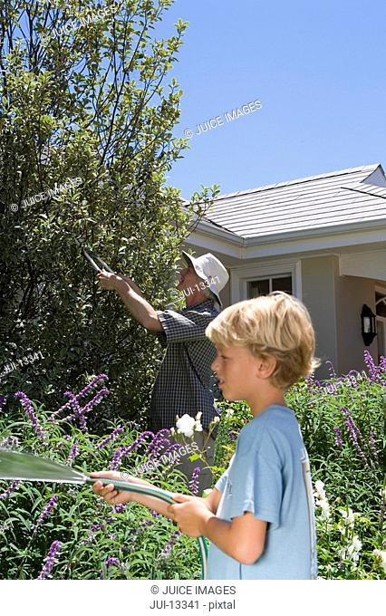 Father and son 8-10 gardening, boy with hose, side view