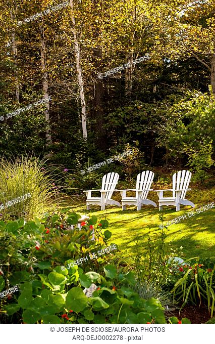View of three white empty Adirondack chairs on green lawn in garden