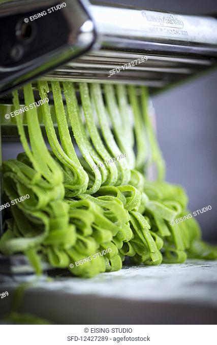 Homemade wild garlic pasta in a pasta machine