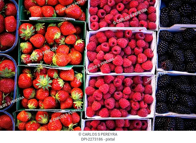 Berries in boxes at a food market, sault vaucluse provence france