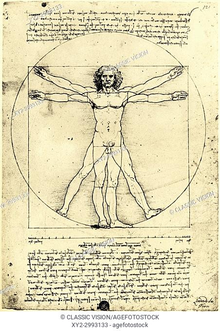 Vetruvian Man, by Leonardo da Vinci created c. 1480-1490. The drawing, demonstrating proportions of the human body, was inspired by the book De architectura by...