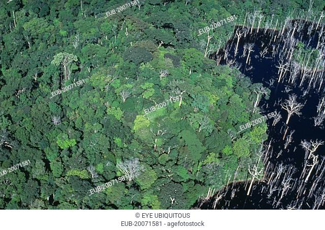 Aerial view over tropical rainforest drowned by the Tucurui reservoir on the Tocantins River