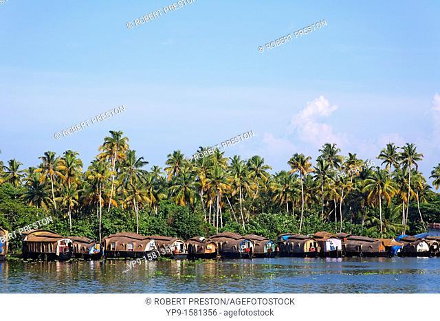 Houseboats on the Kerala Backwaters, Kerala, India