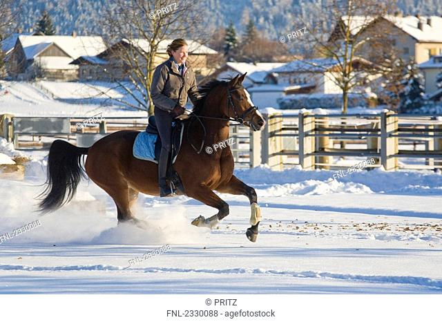 Woman riding horse in snow