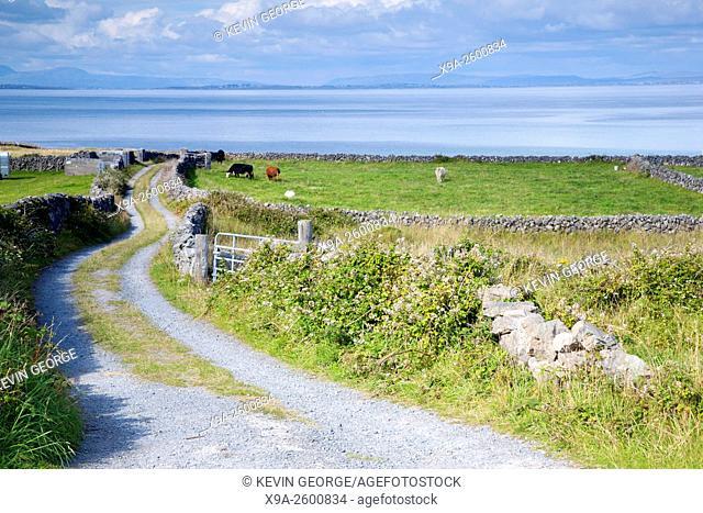 Open Countryside near Kilronan on Inishmore, Aran Islands, Ireland