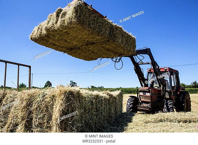Tractor in a field, loading hay bales onto a trailer