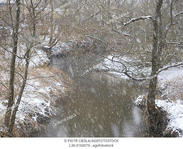 Early spring. Last snow. Podlasie region. Poland