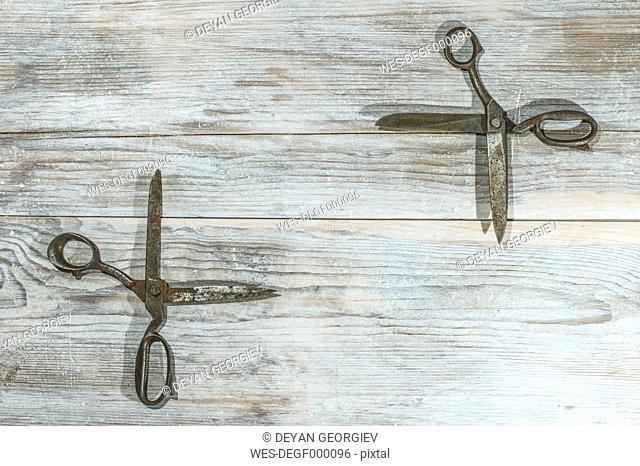 Old vintage scissors on wood