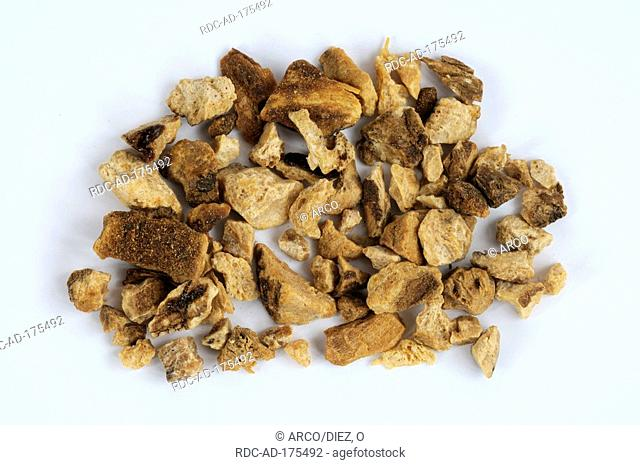 Largehead Atractylodes Rhizome, Atractylodis macrocephalae Rhiz., Bai Zhu, cut out, object