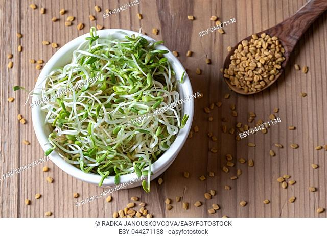 Dry and sprouted fenugreek seeds