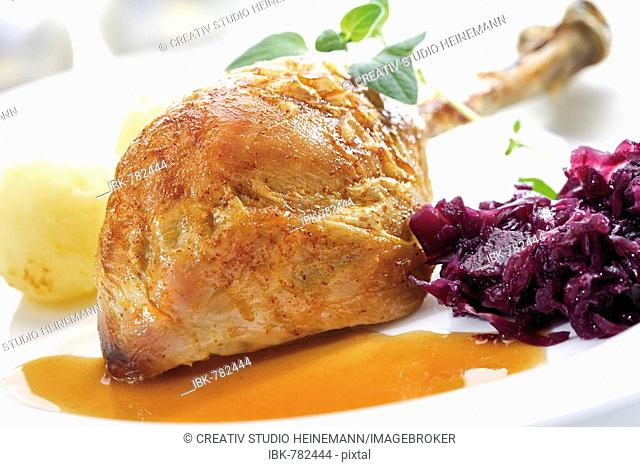 Roast turkey drumstick served on a white plate with red cabbage, potato dumplings and gravy